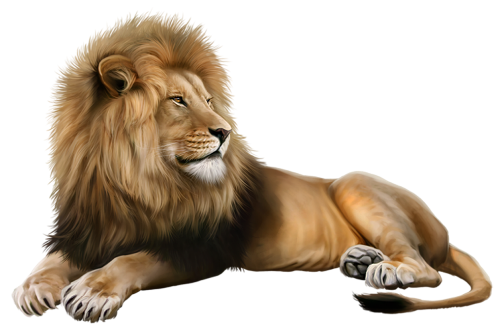 Lion King Portrait Mane Beast  - serginion / Pixabay